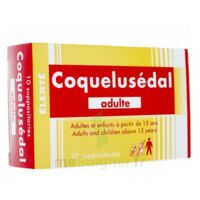 Coquelusedal Adultes, Suppositoire à Talence